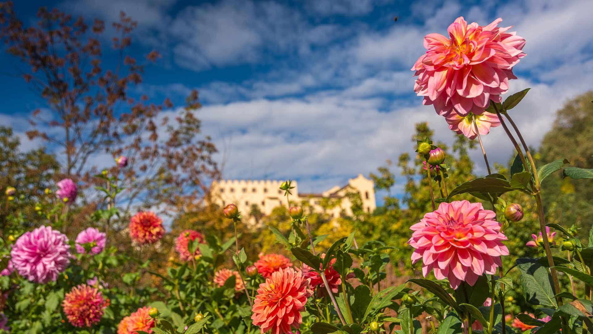 Primavera - Giardini di Castel Trauttmansdorff