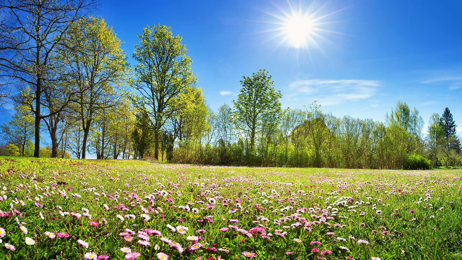 Primavera a Merano e dintorni