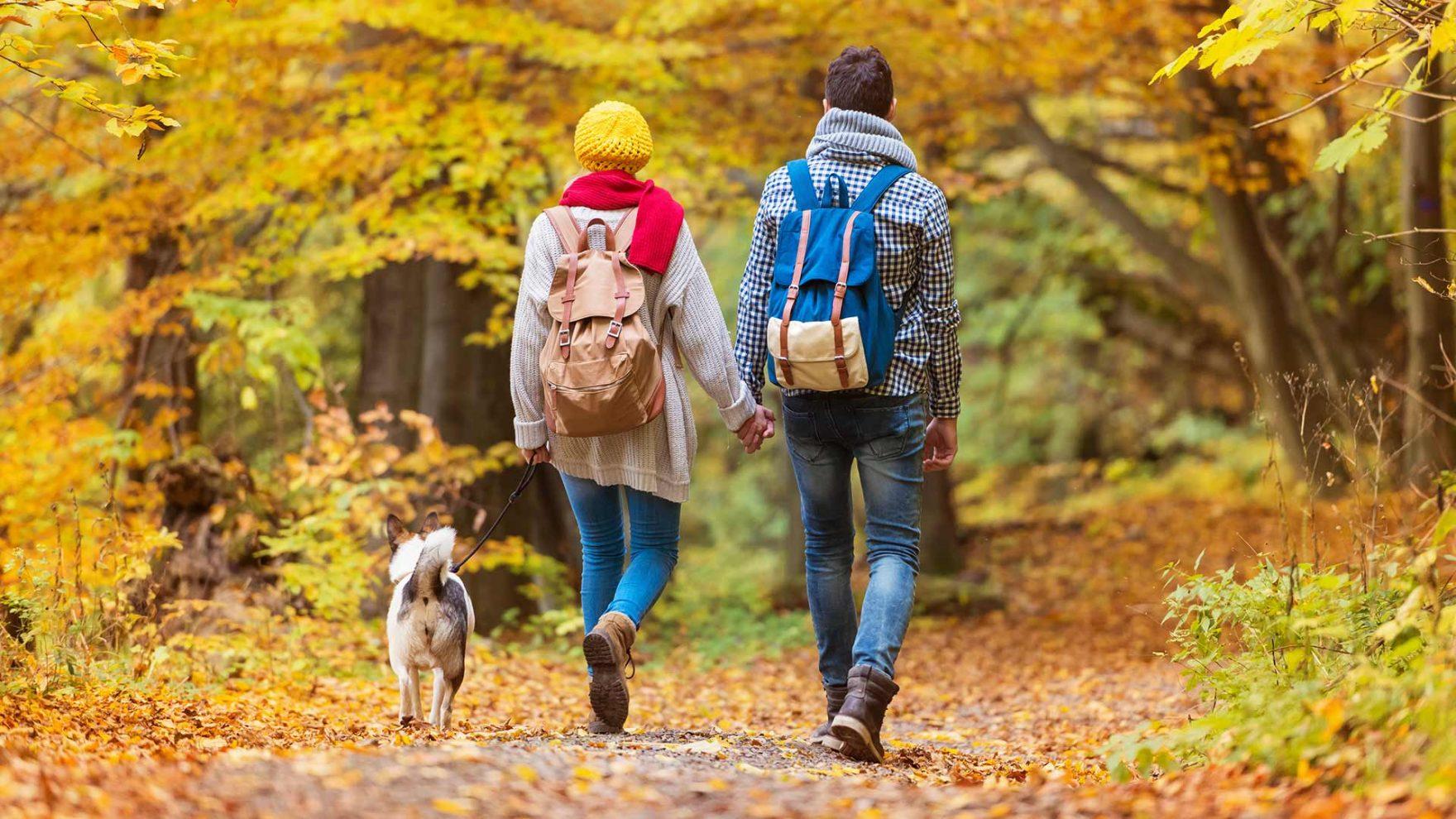 Vacanze d'autunno a Merano e dintorni - Vacanze con il cane