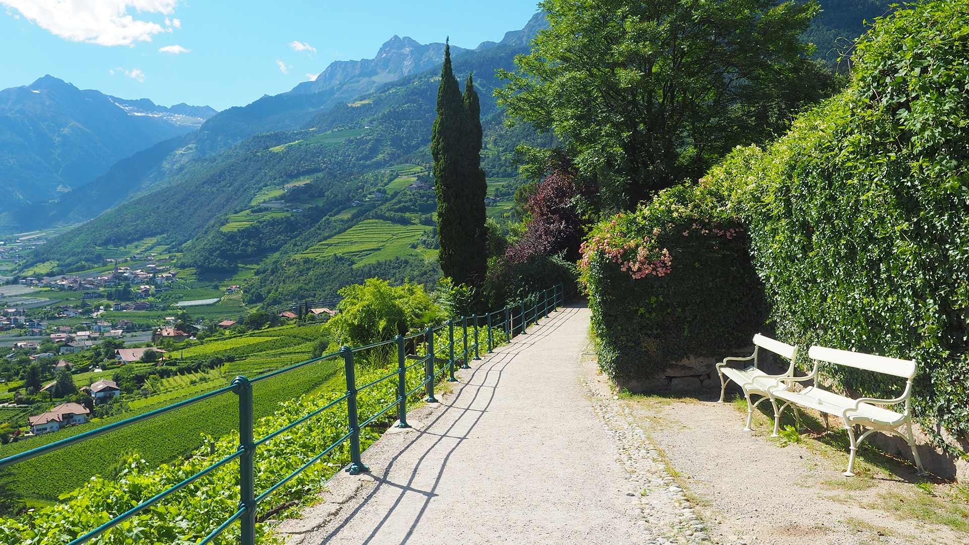 Vacanze estive - Passeggiata Tappeiner