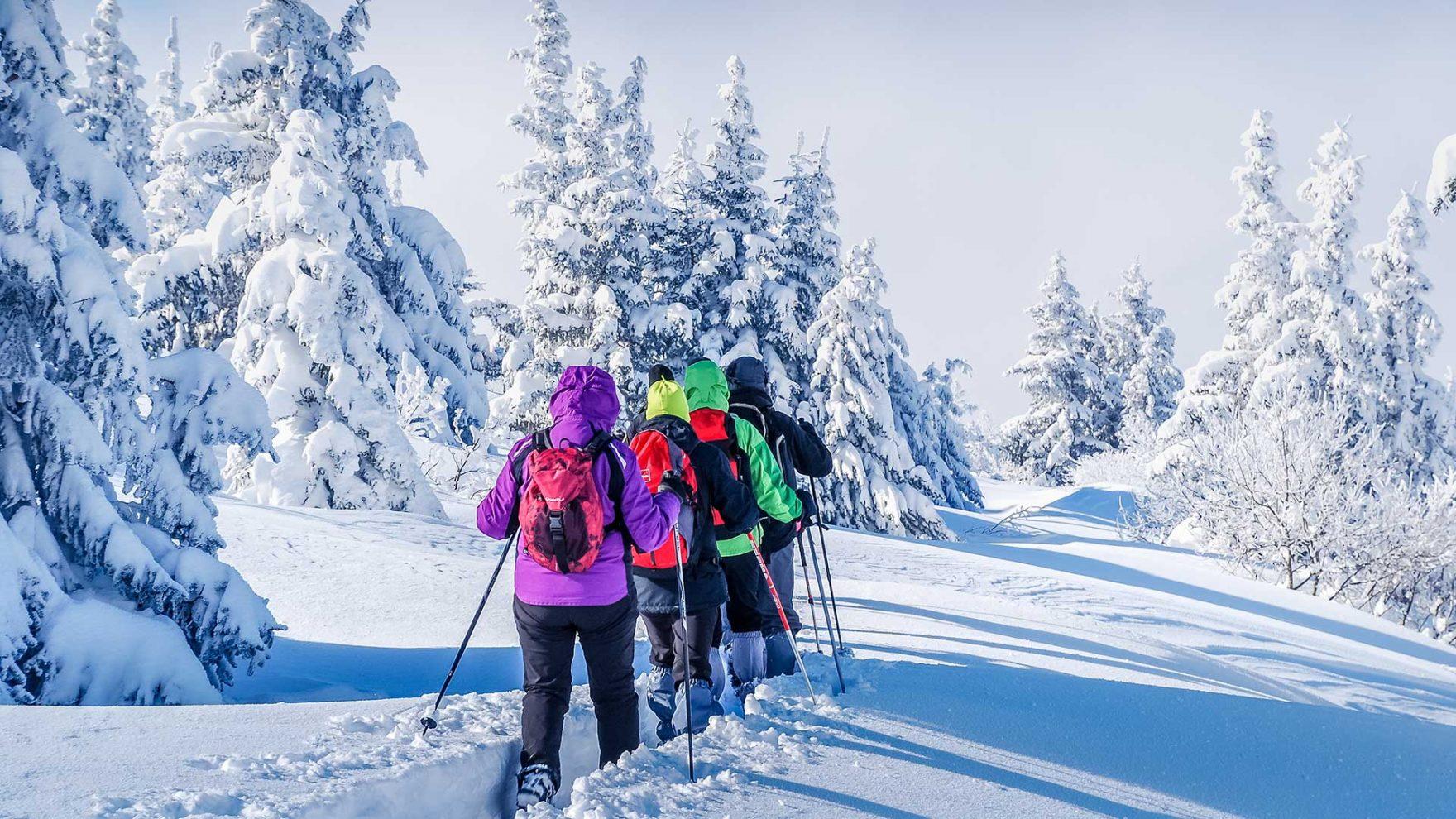Vacanze invernali a Merano e dintorni - Vacanze escursionistiche