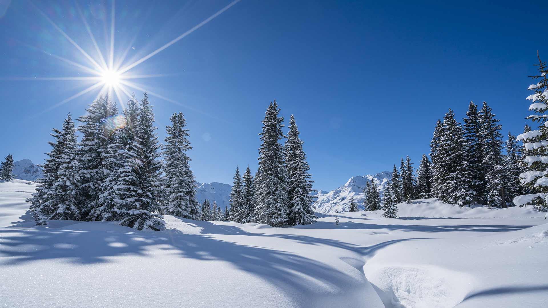 Vacanze invernali a Merano e dintorni