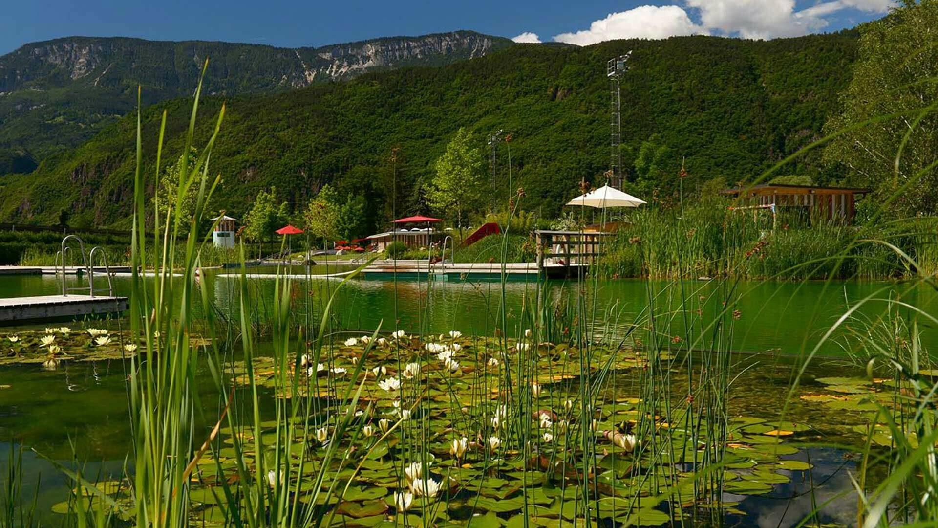 La piscina naturale a Gargazzone