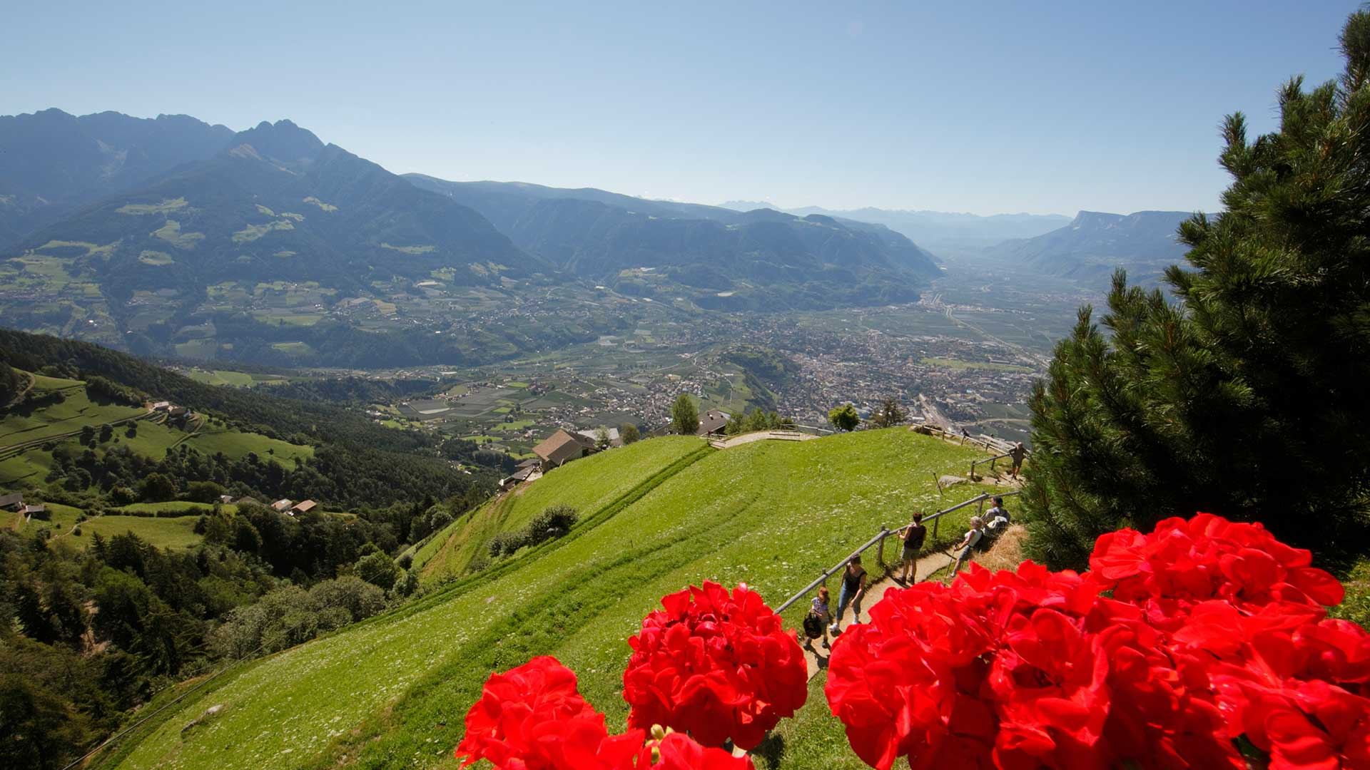 Vista su Tirolo
