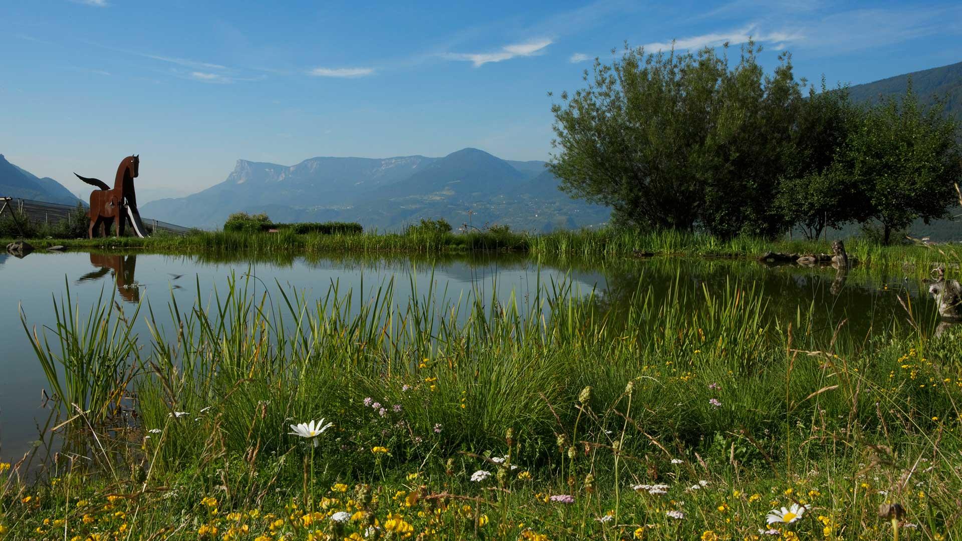 Paesaggio - Tirolo