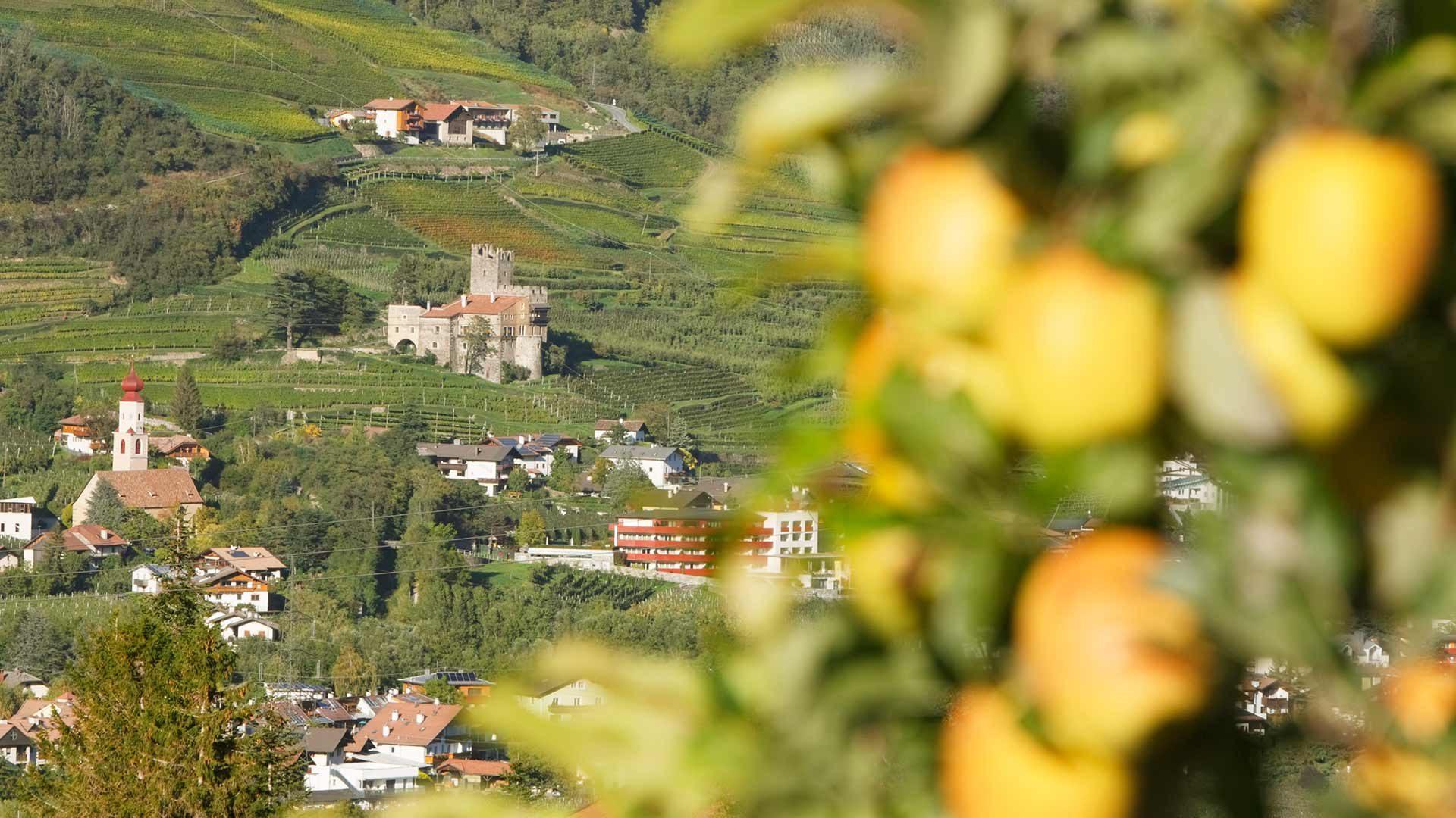 Località turistica Alpine Wellness - Naturno