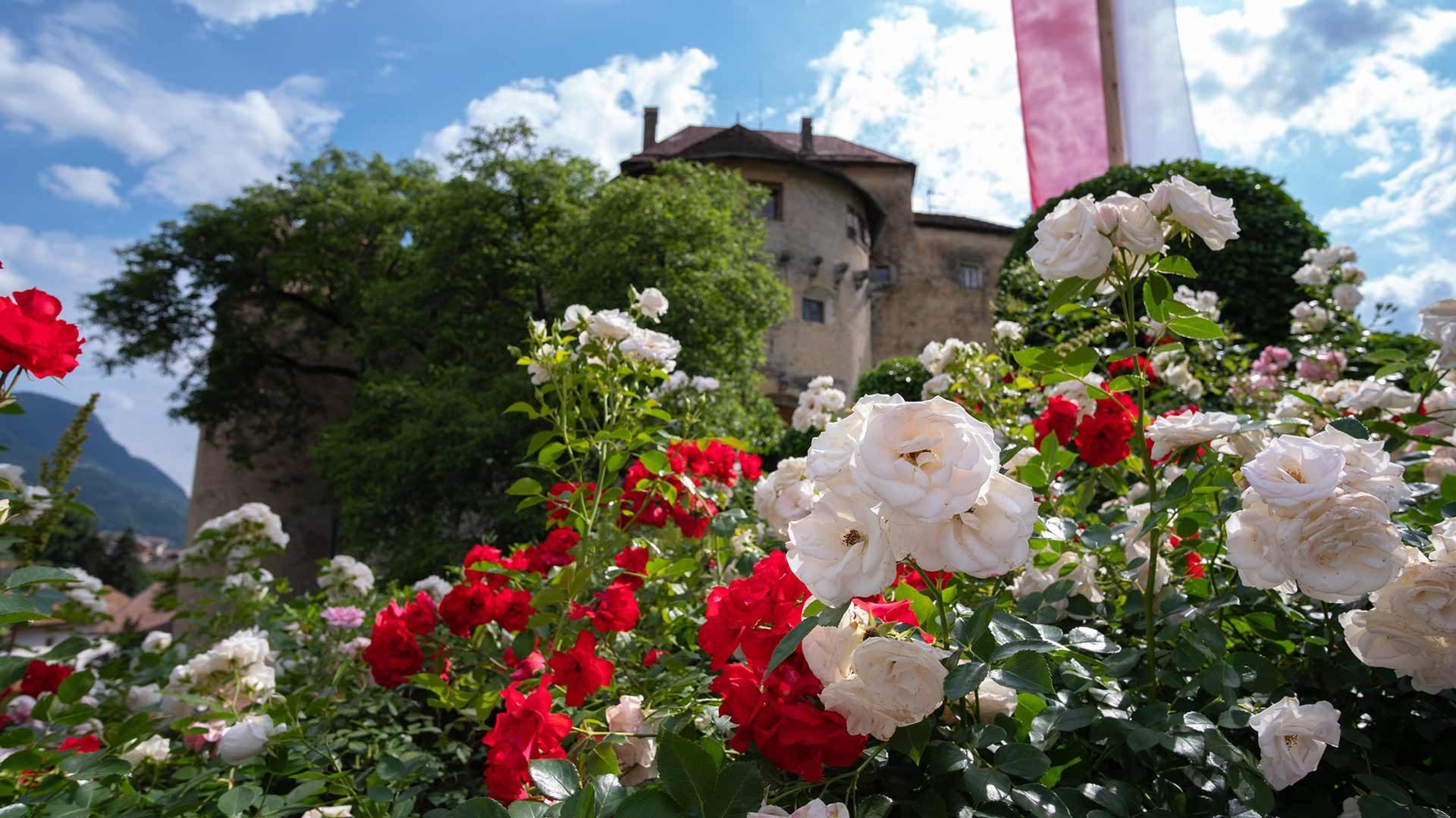 Castello di Scena in Alto Adige