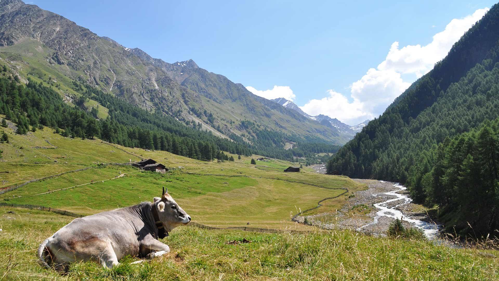 Area escursionistica - Val Senales