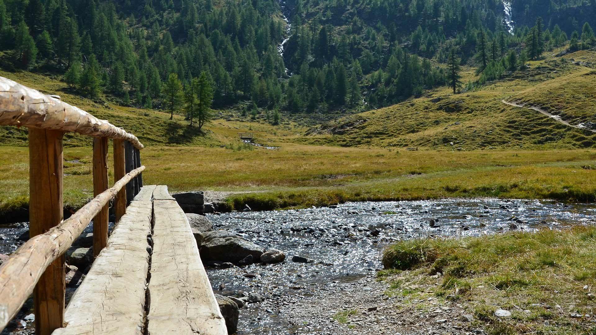 Vacanze estive nella Val d'Ultimo