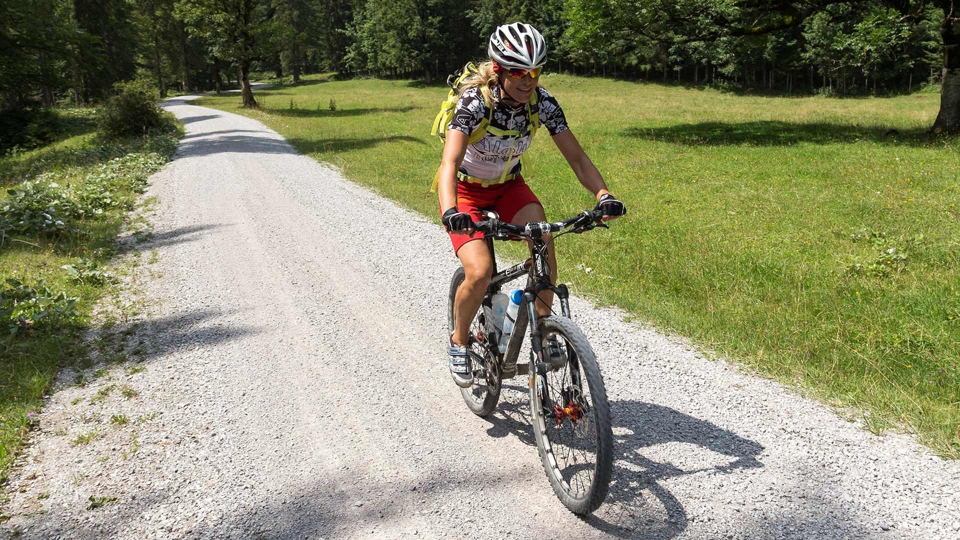 Giro in bicicletta alla malga Fartleis