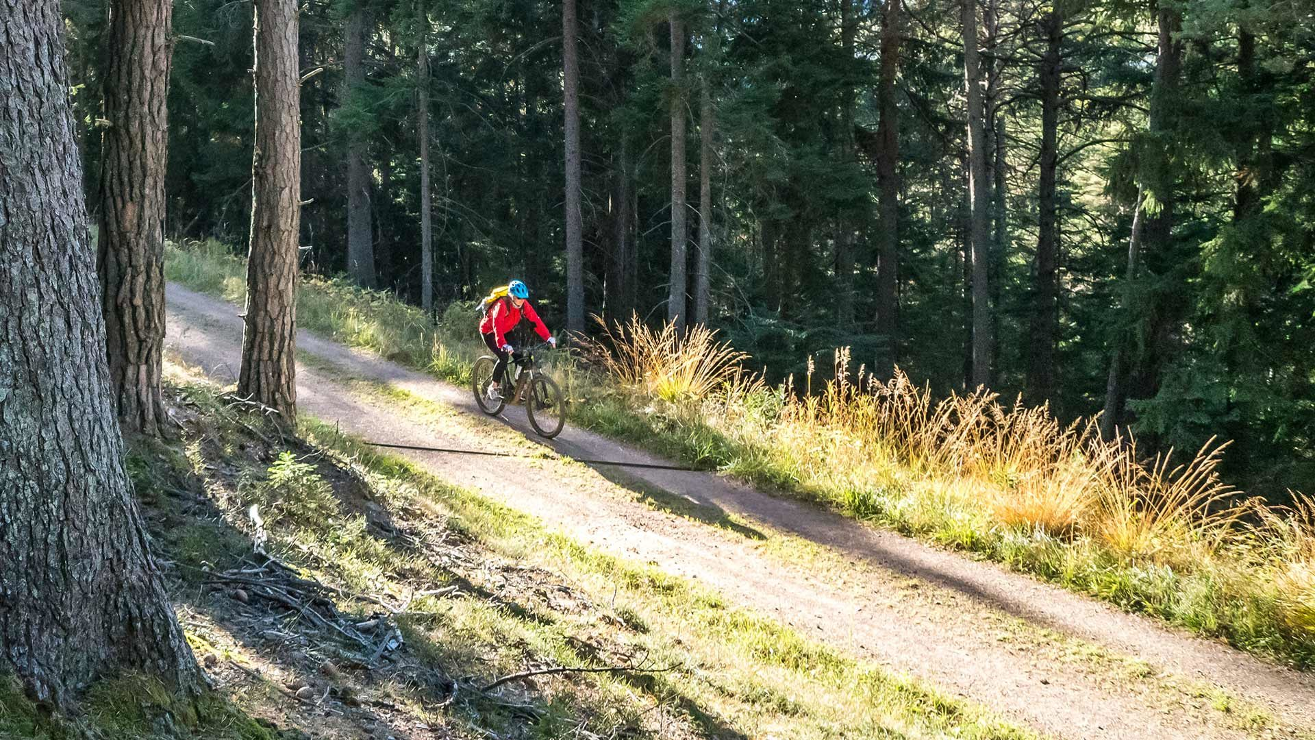 Giro in bicicletta alla Malga Fiecht