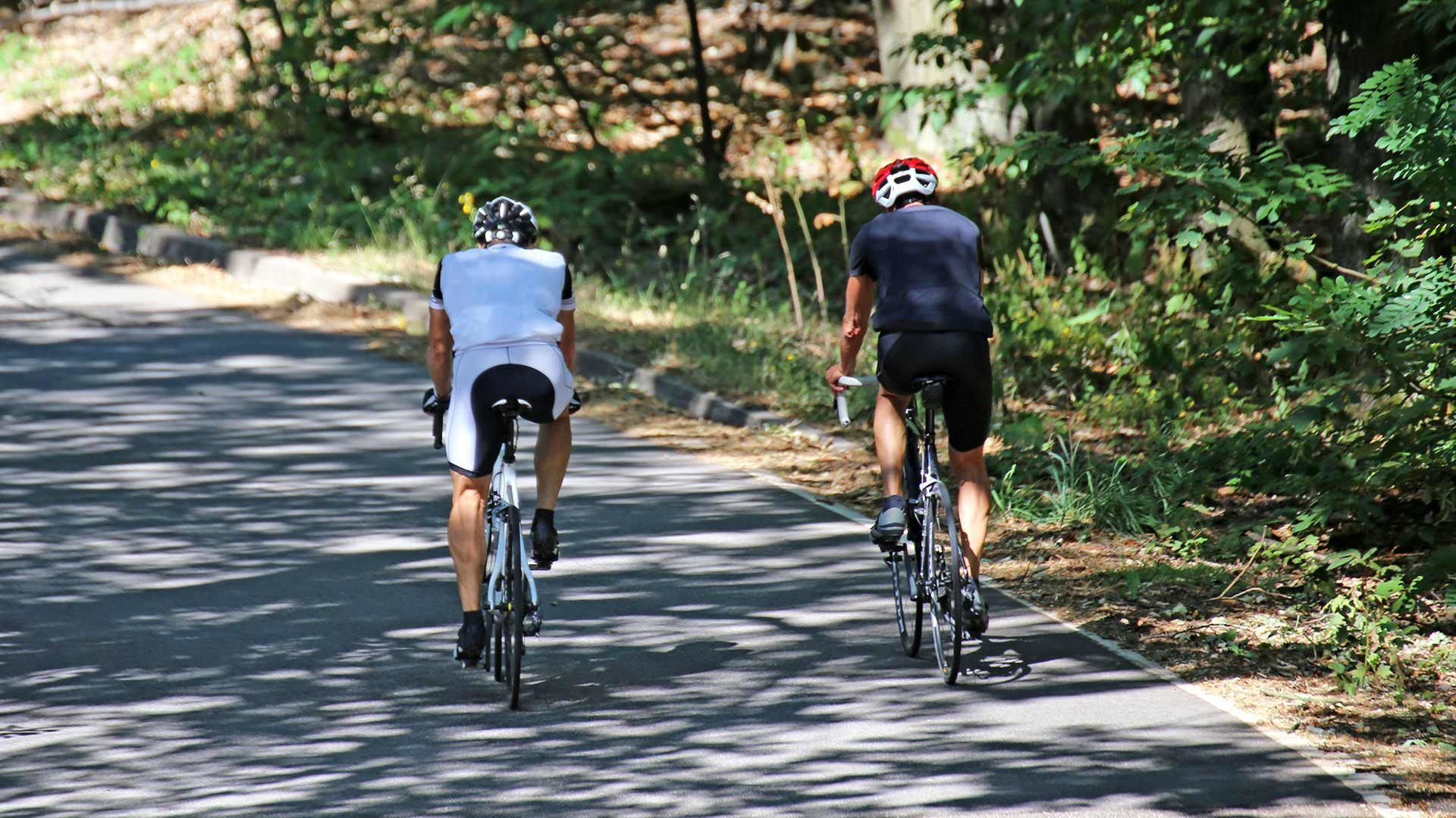 Tour in bicicletta Passo delle Palade – Forcella di Brez