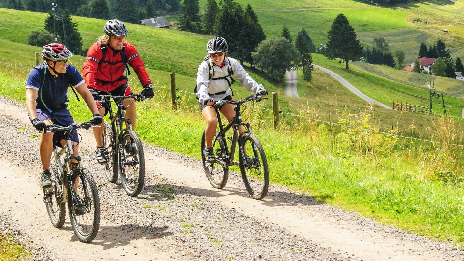 Tour in bicicletta Avelengoo - malga Wurzer