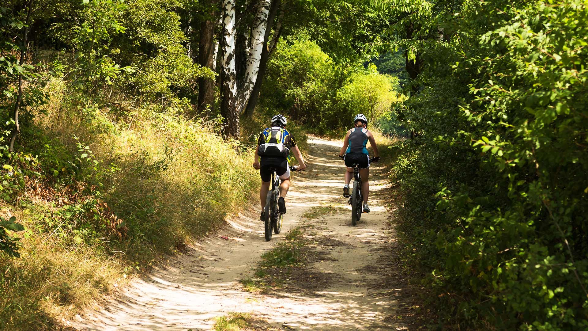 Tour in bicicletta alla malga Laugen
