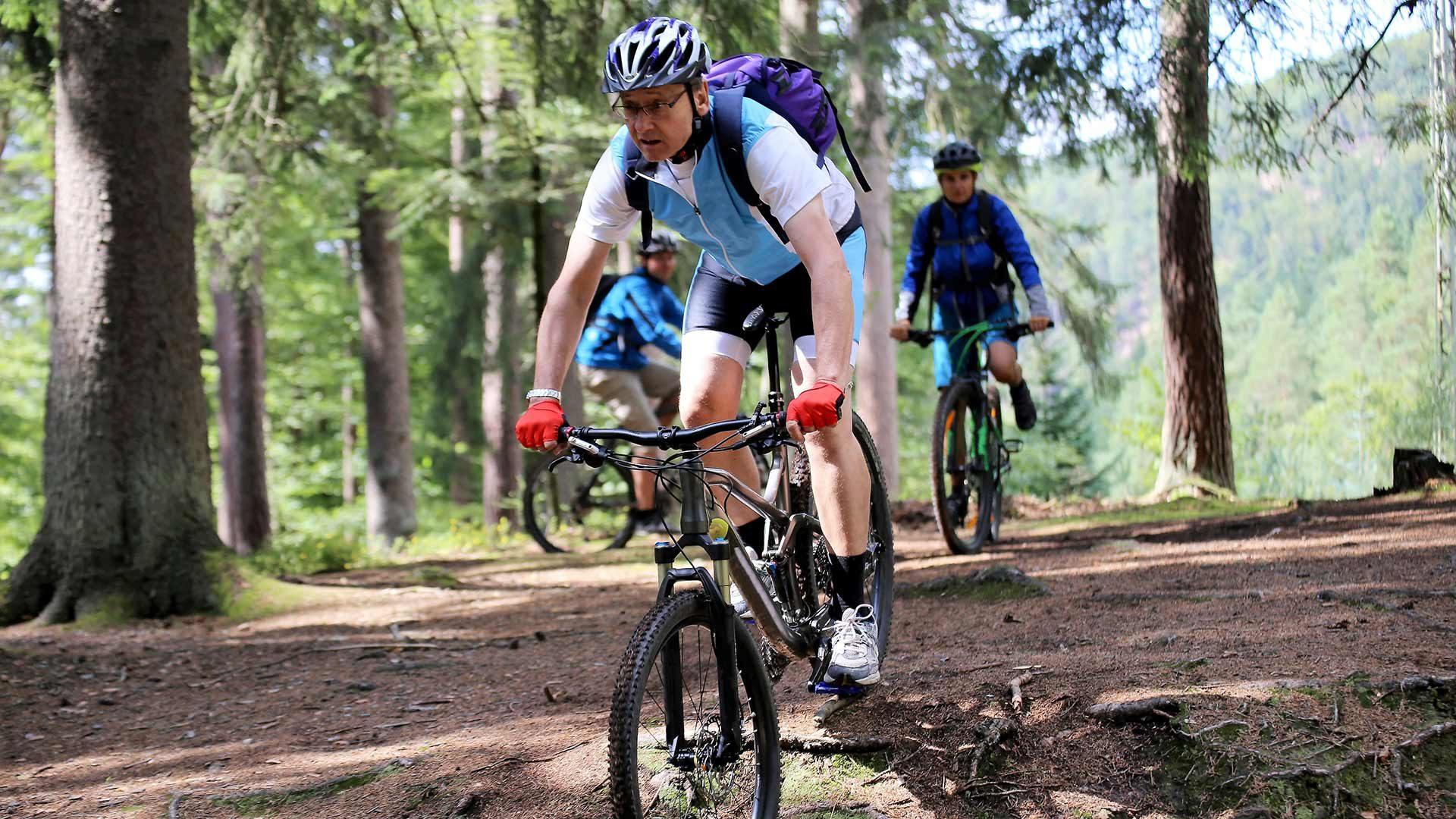 Tour in bicicletta Lauregno - Passo Mendola