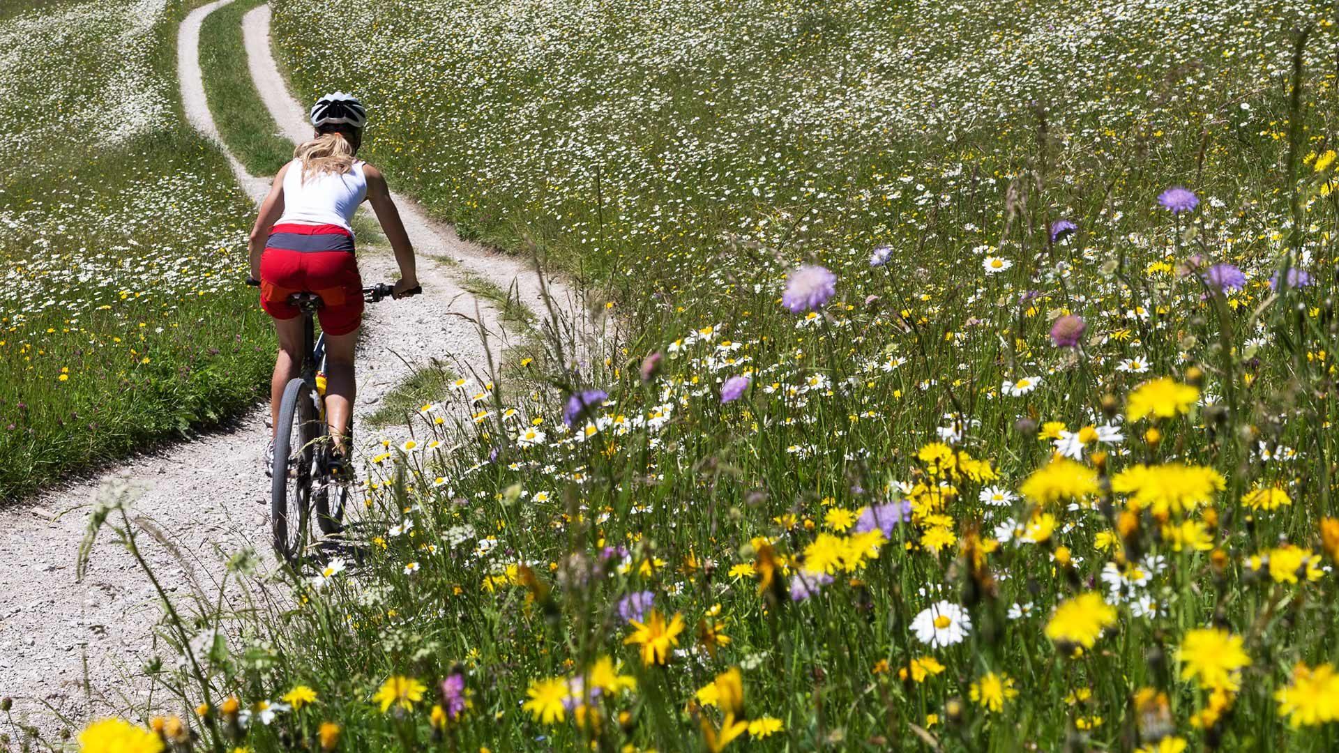 Tour in bicicletta alla Malga Mariolberg