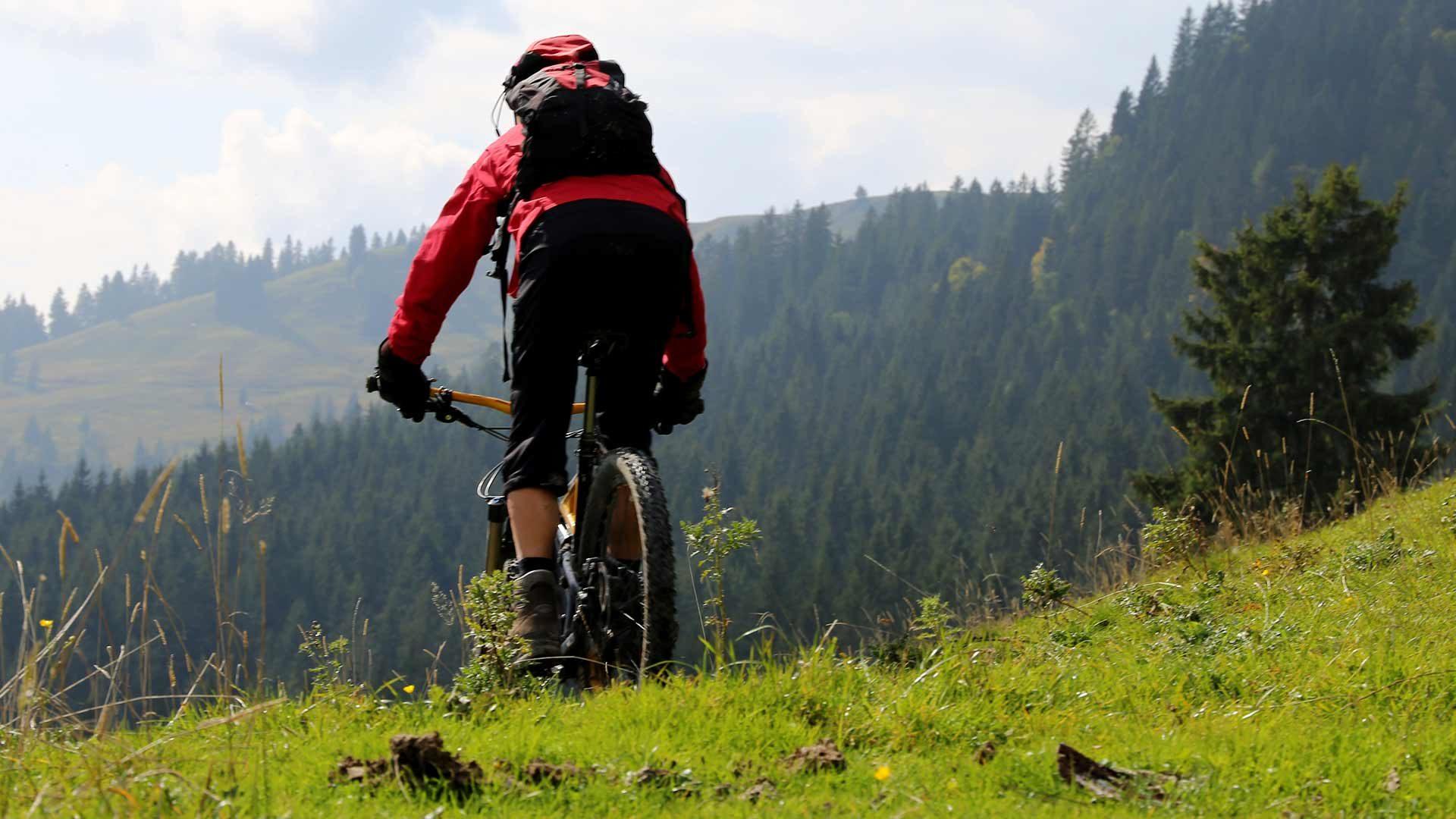 Tour in bicicletta alla Malga Marcenel