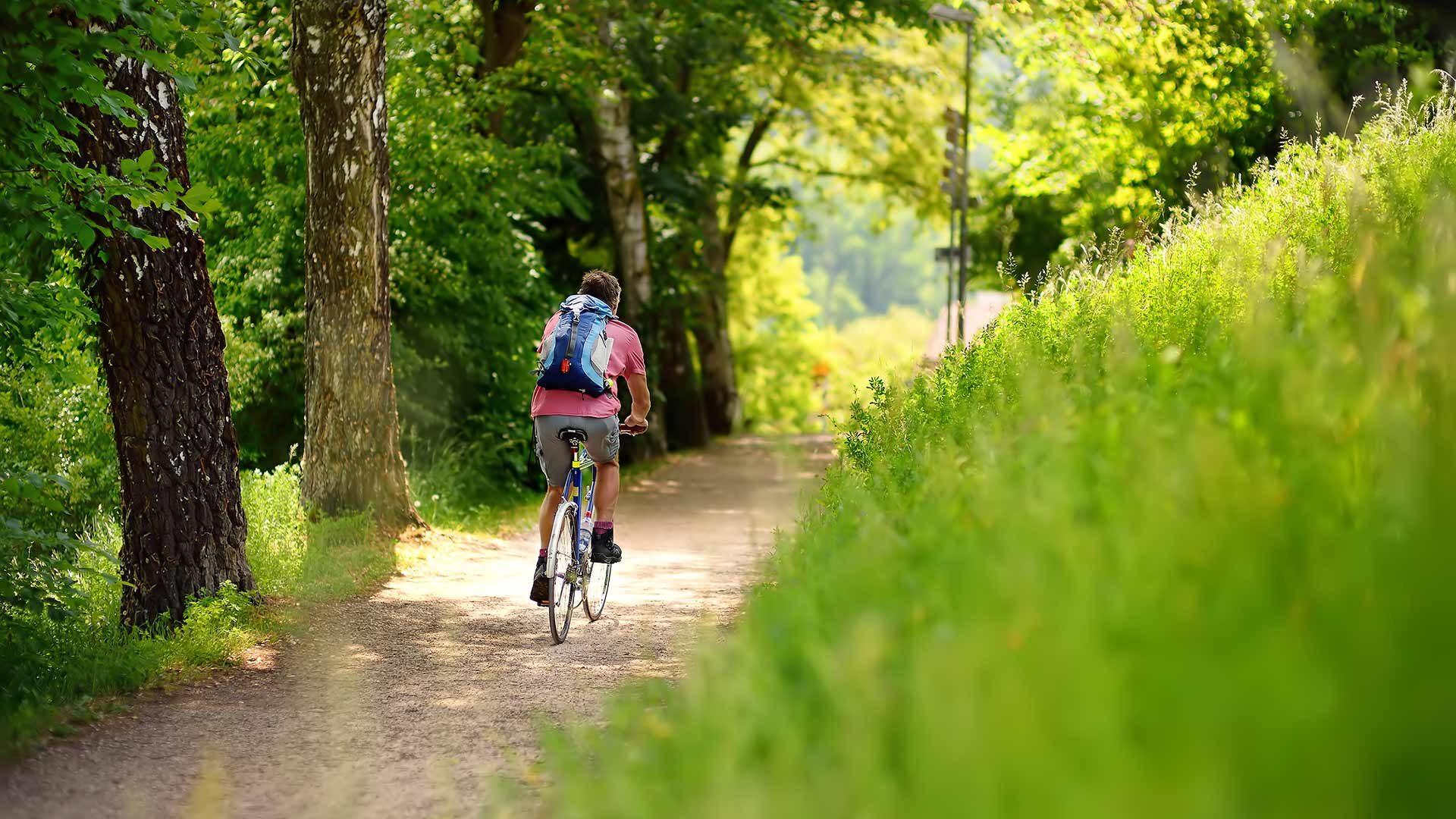 Tour in bicicletta Merano - Tirolo - Caines - Merano