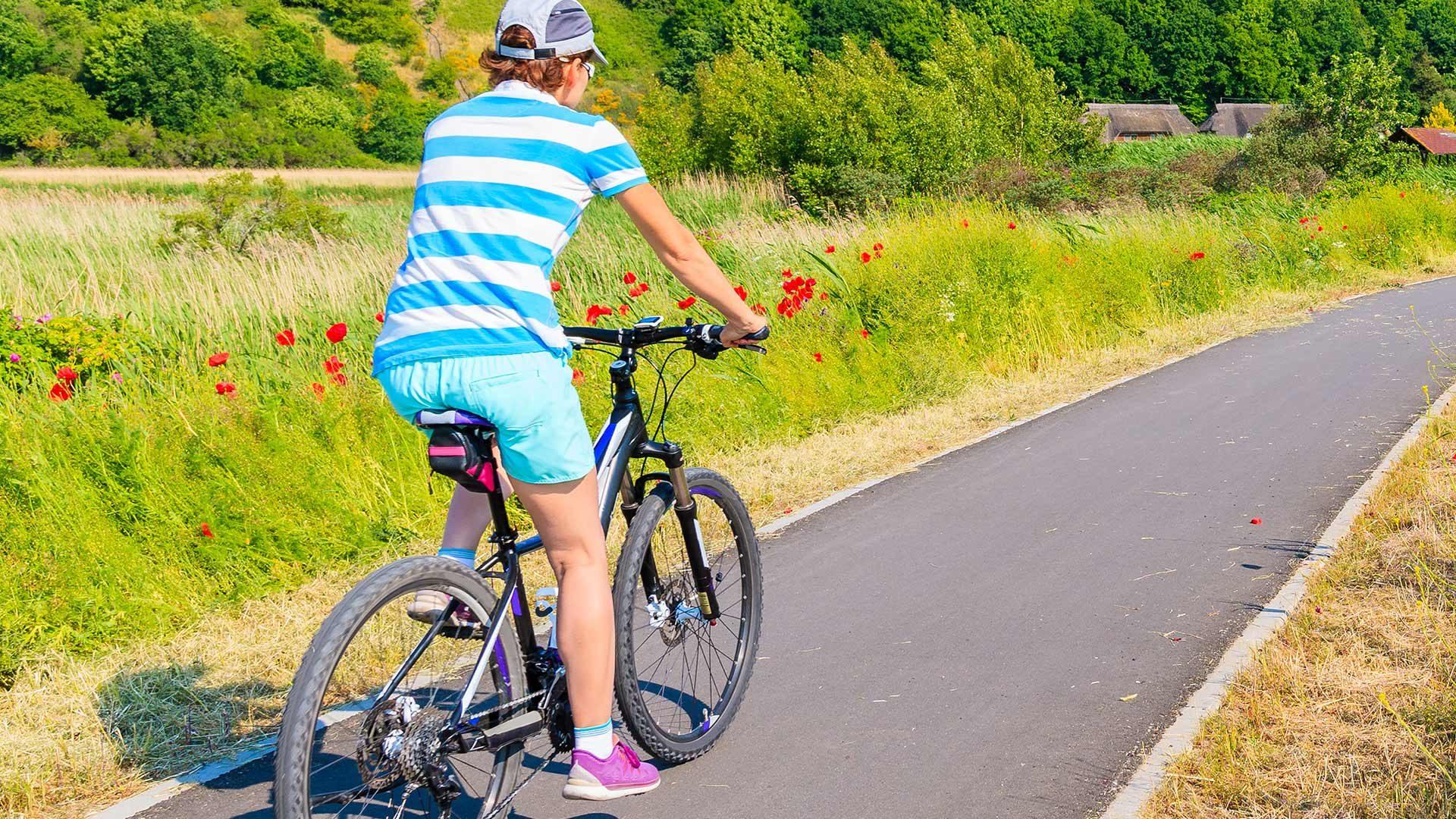 Tour in bicicletta Merano - Lana
