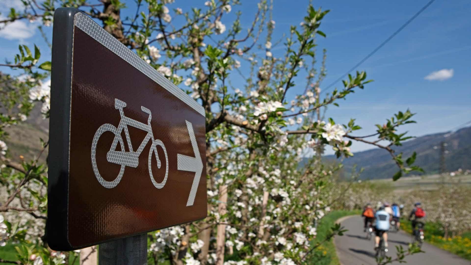 Tour in bicicletta Merano - Naturno
