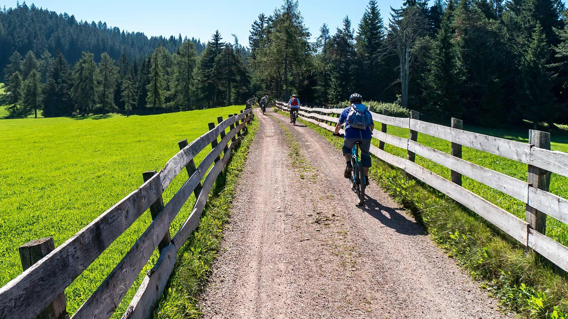 Tour in bicicletta alla malga di Naturno