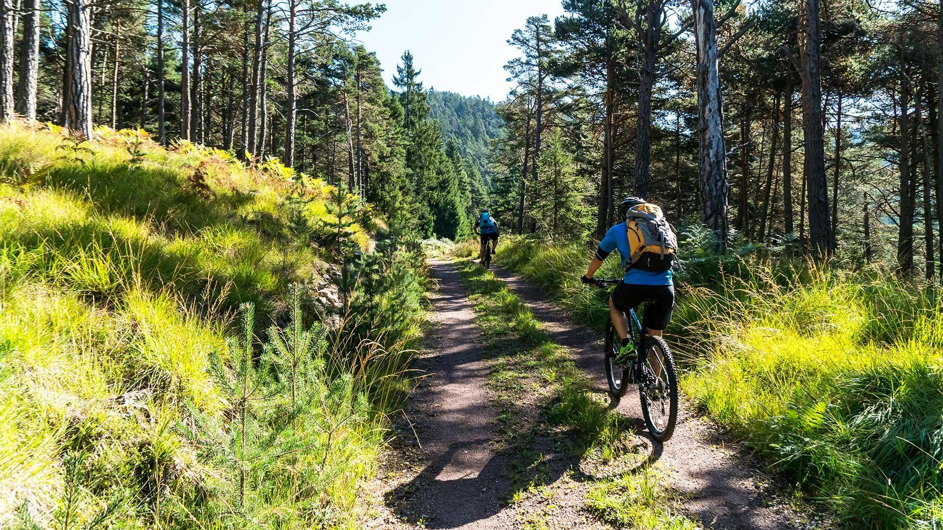 Tour panoramico Monte Tramontana