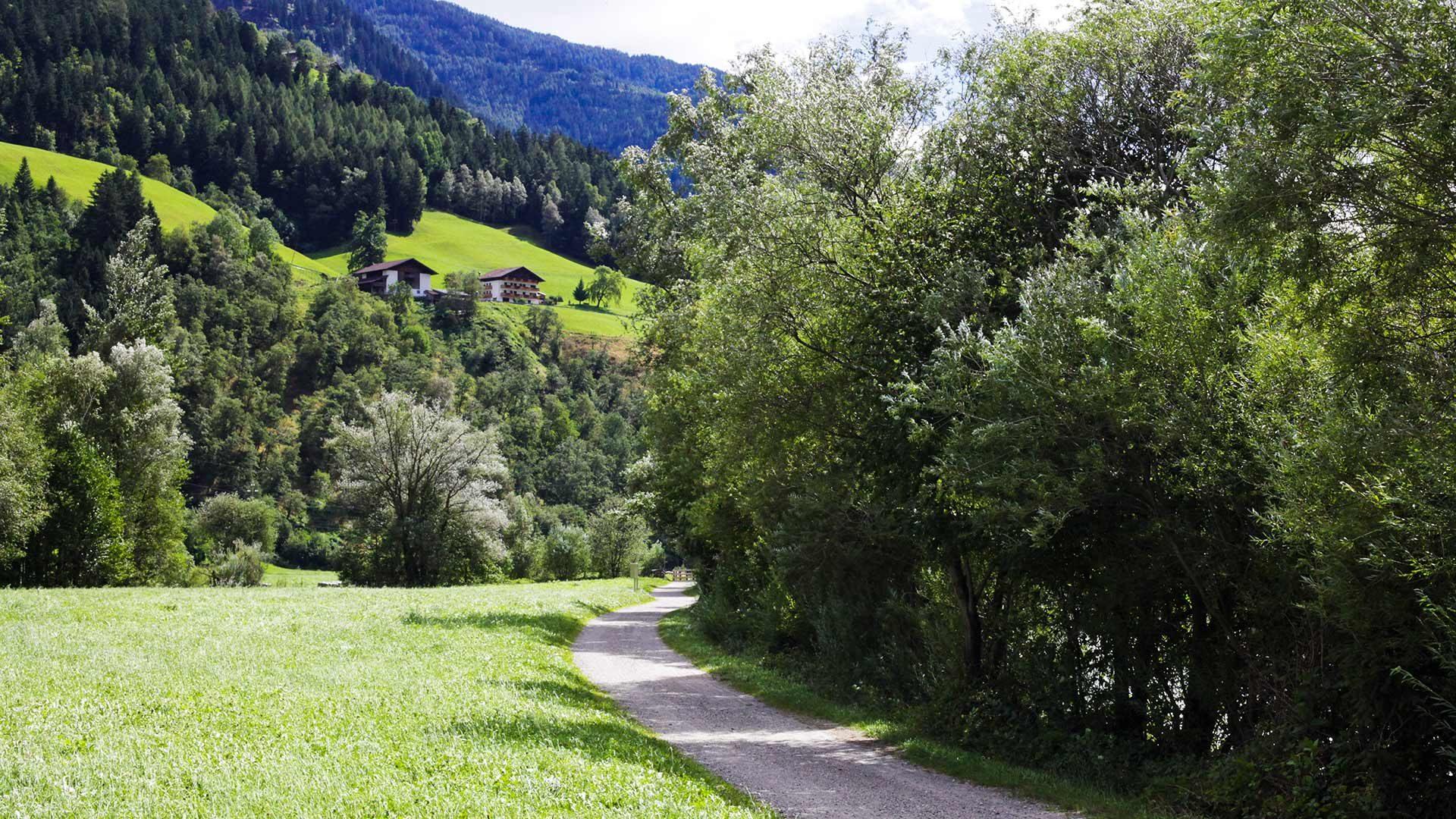 Tour in bicicletta in Val Passiria