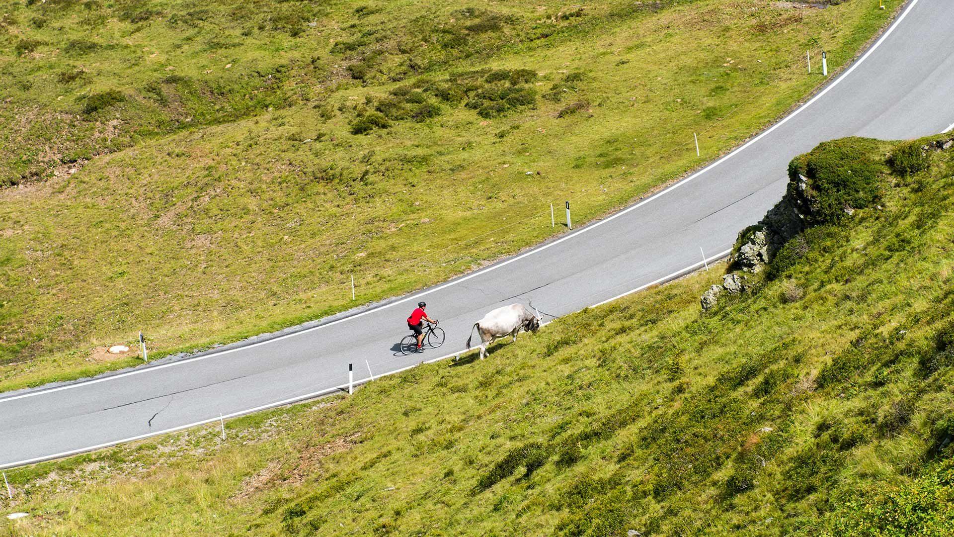 Giro in bicicletta - Passo di Giovo