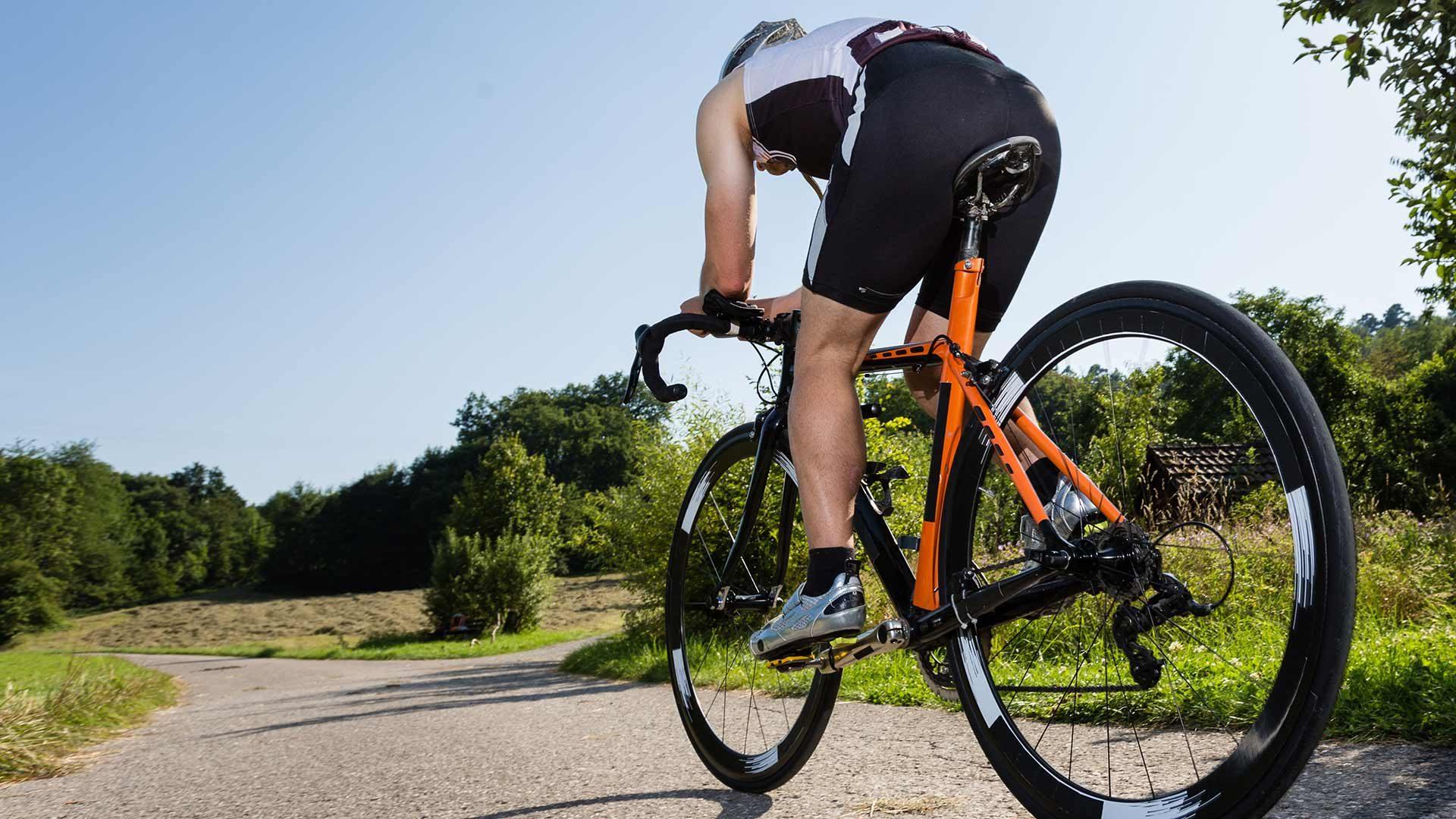 Tour in bici da corsa: Passo Palade - Passo della Mendola - Cermes