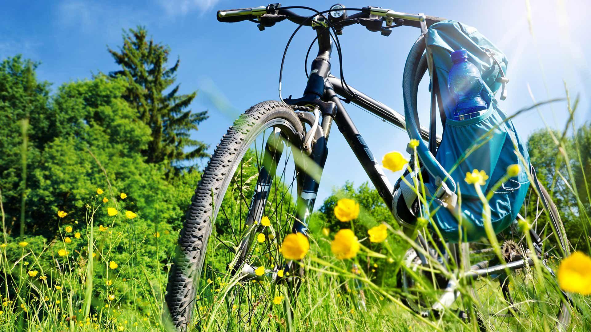 Gita in bici di Rifiano