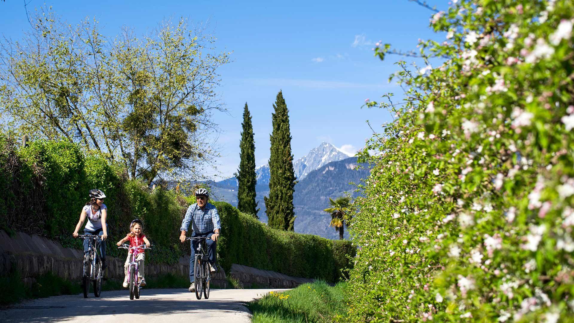 Giro in bicicletta Cermes - Caldaro - Cermes