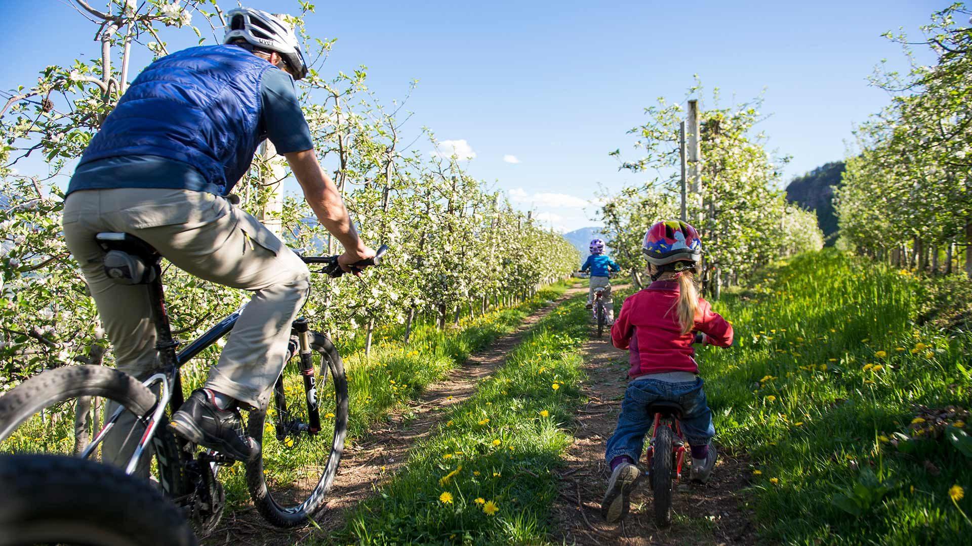 Giro in bicicletta Cermes - Malles