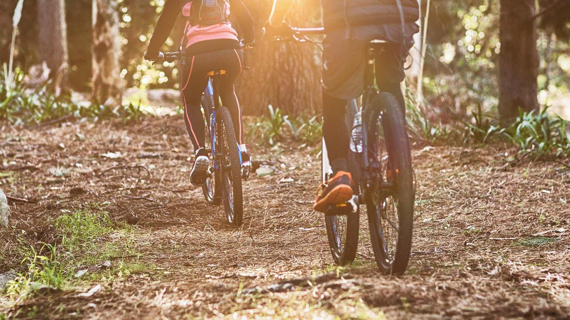 Tour in bicicletta al Giogo di Foiana