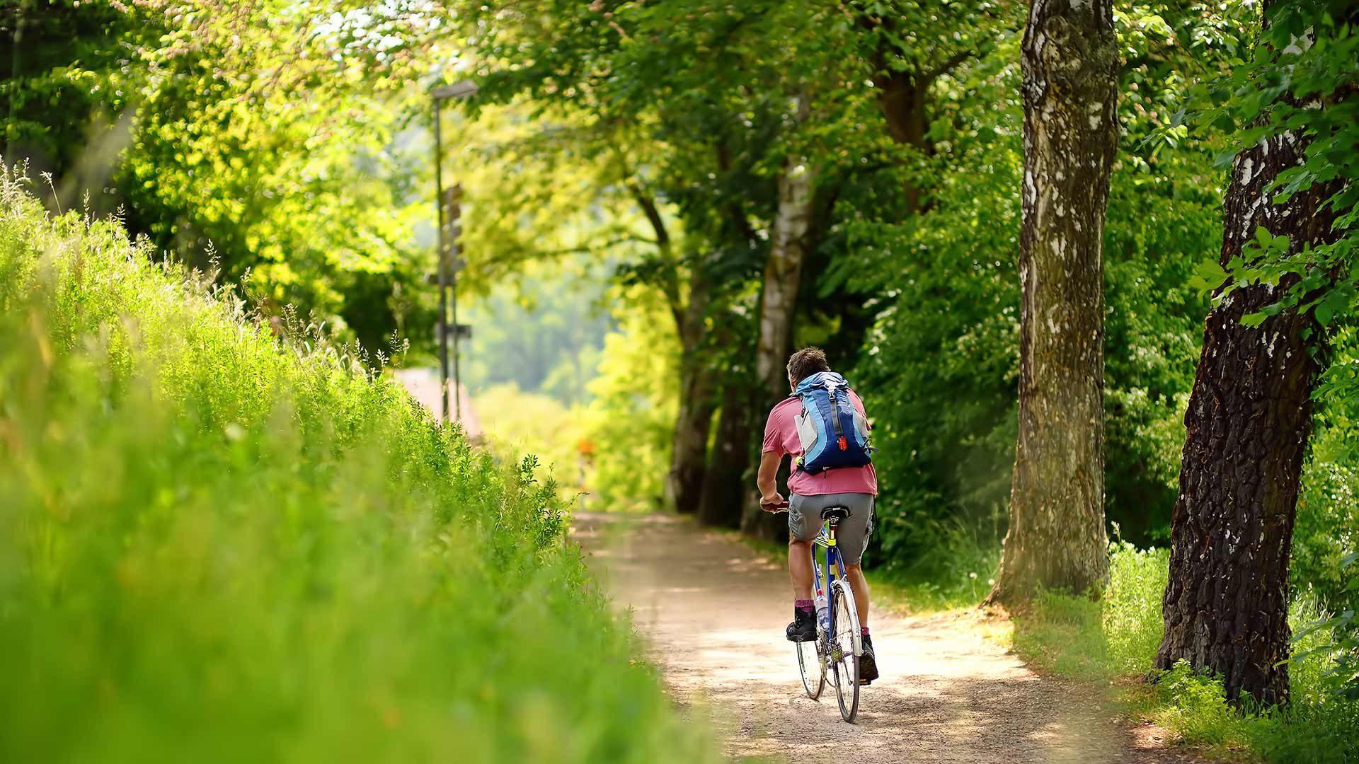 Giro in bicicletta alla malga di Vannes