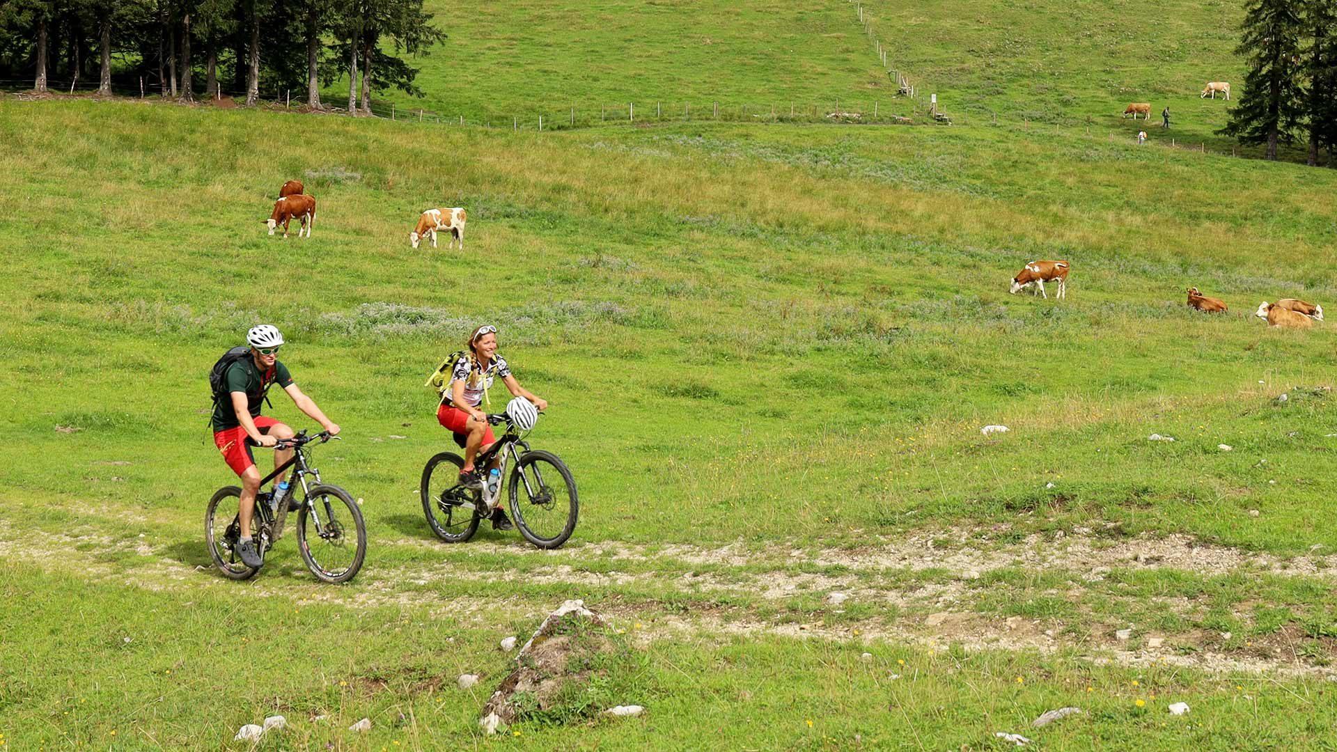 Tour in bicicletta al maso Zmailer