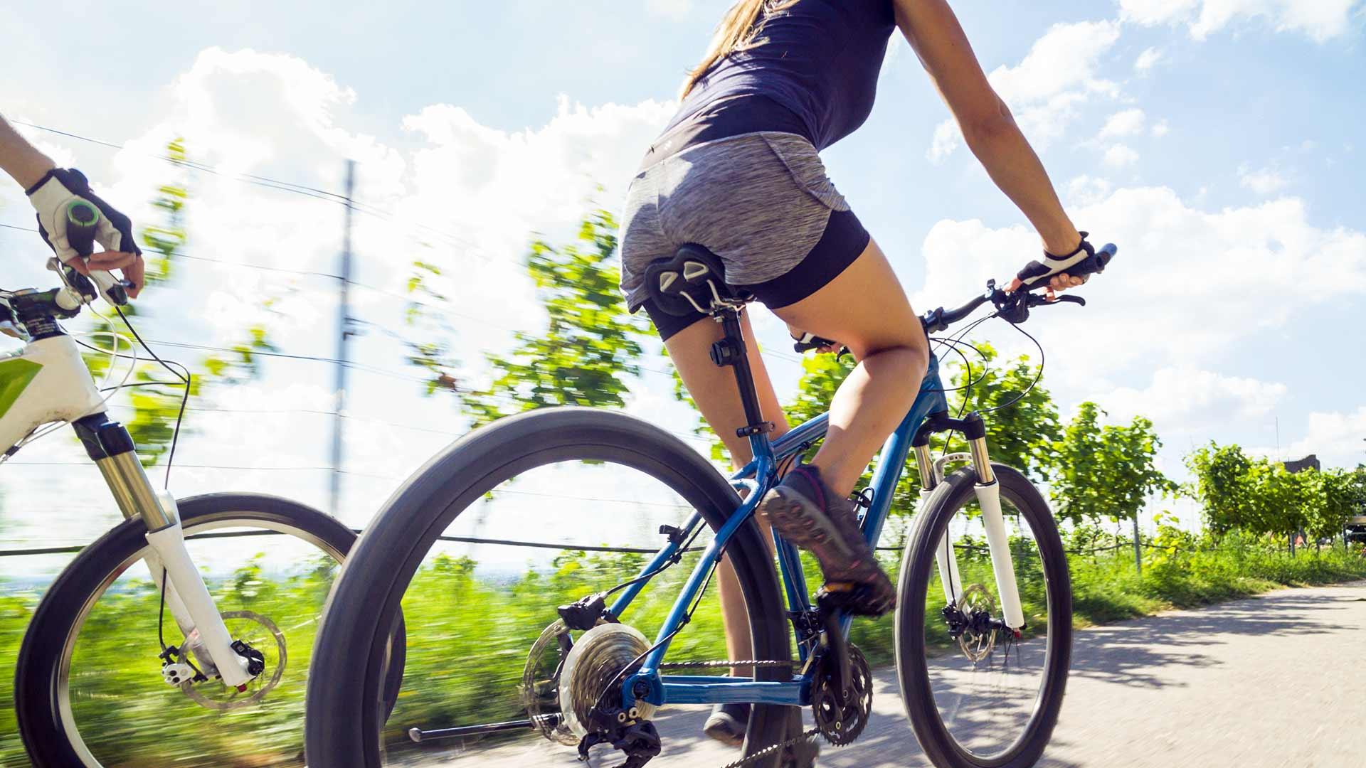 Tour in bici a Merano e dintorni