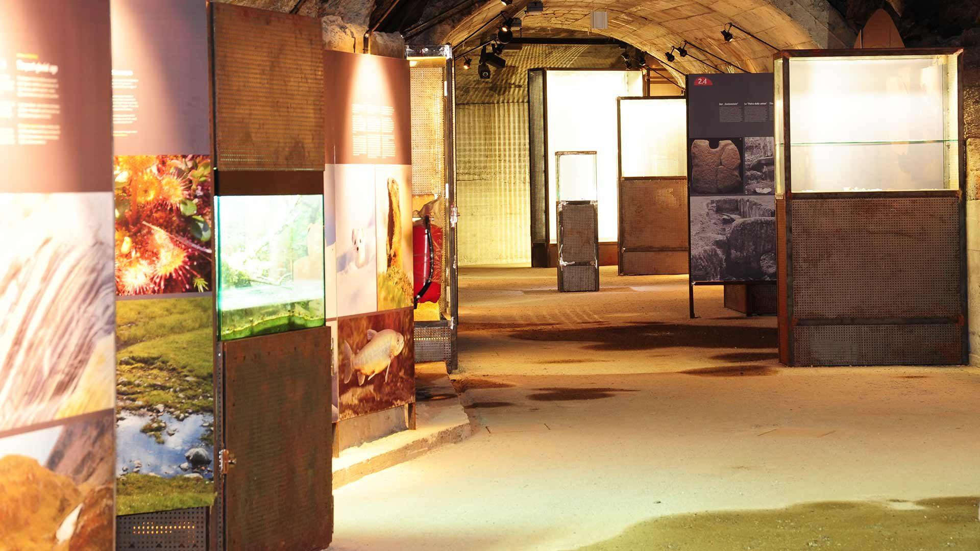 Bunker Mooseum a Moso