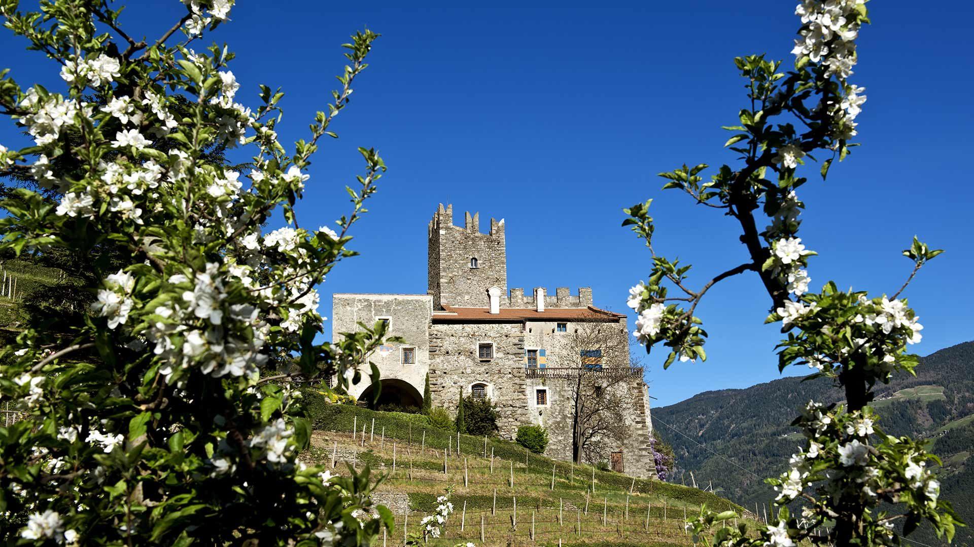 Castel Naturno e Castel Taranto