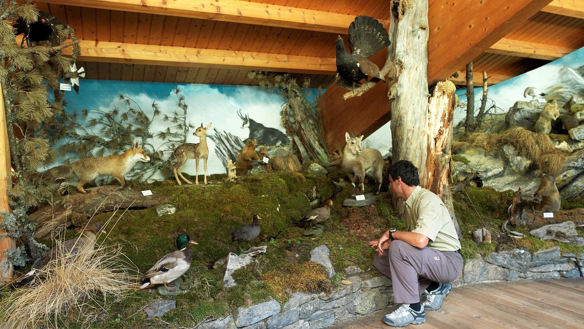 Il Centro Visite Gruppo di Tessa a Naturno