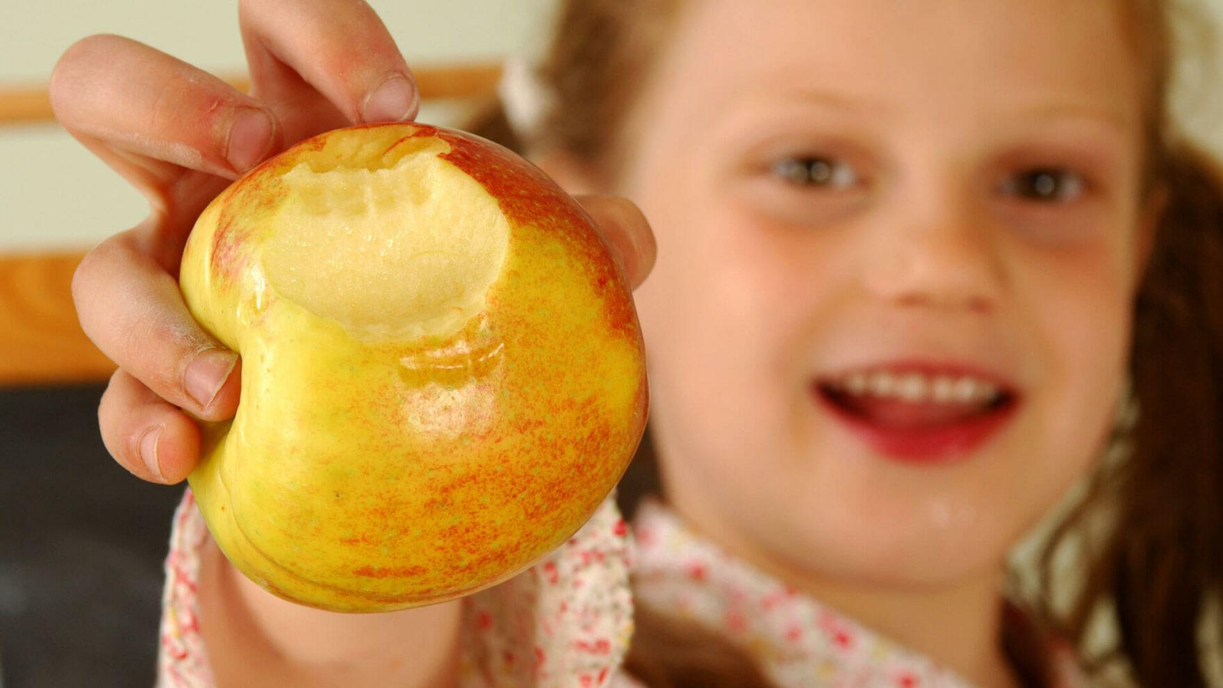 Il museo della Frutticoltura per bambini