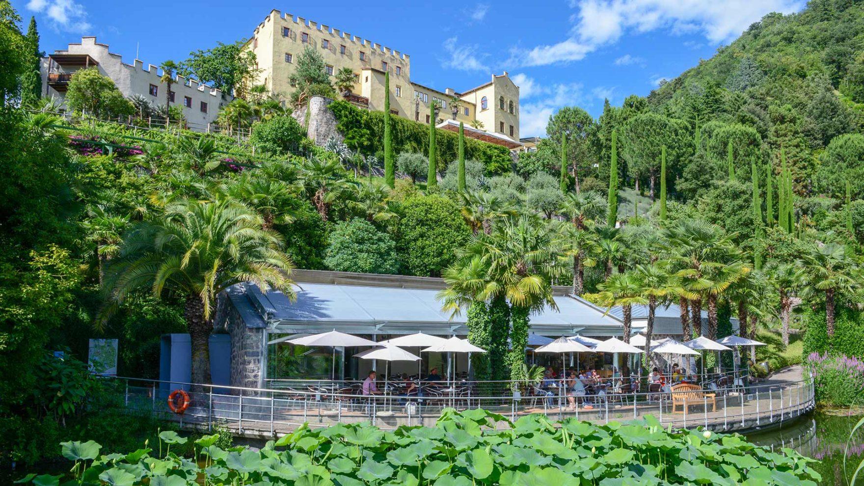 Piante da tutto il mondo - Giardini di Castel Trauttmansdorff