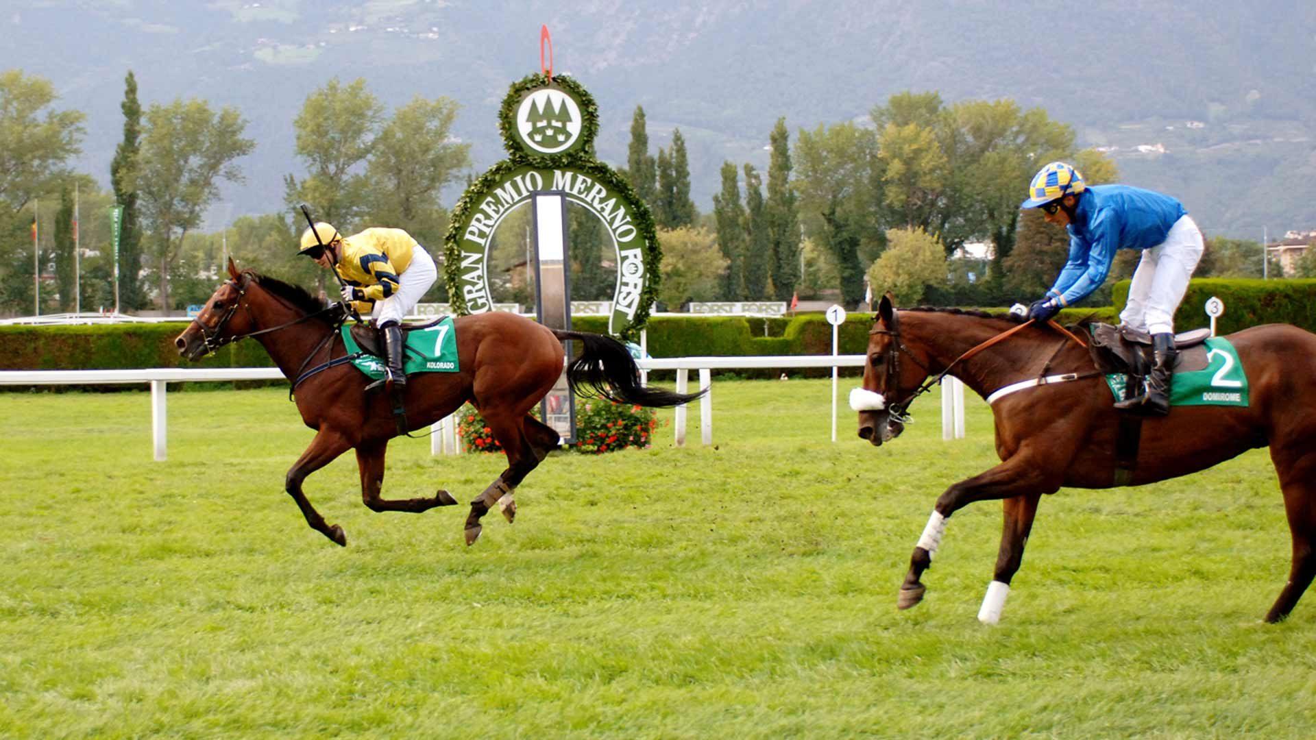 Alto Adige - Gran Premio Merano