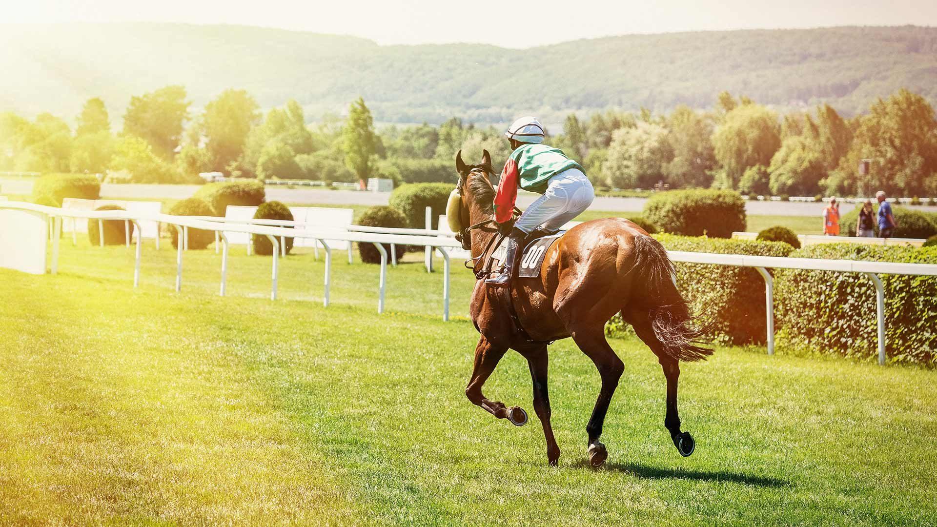 Gran Premio Merano Alto Adige - Corse di cavalli