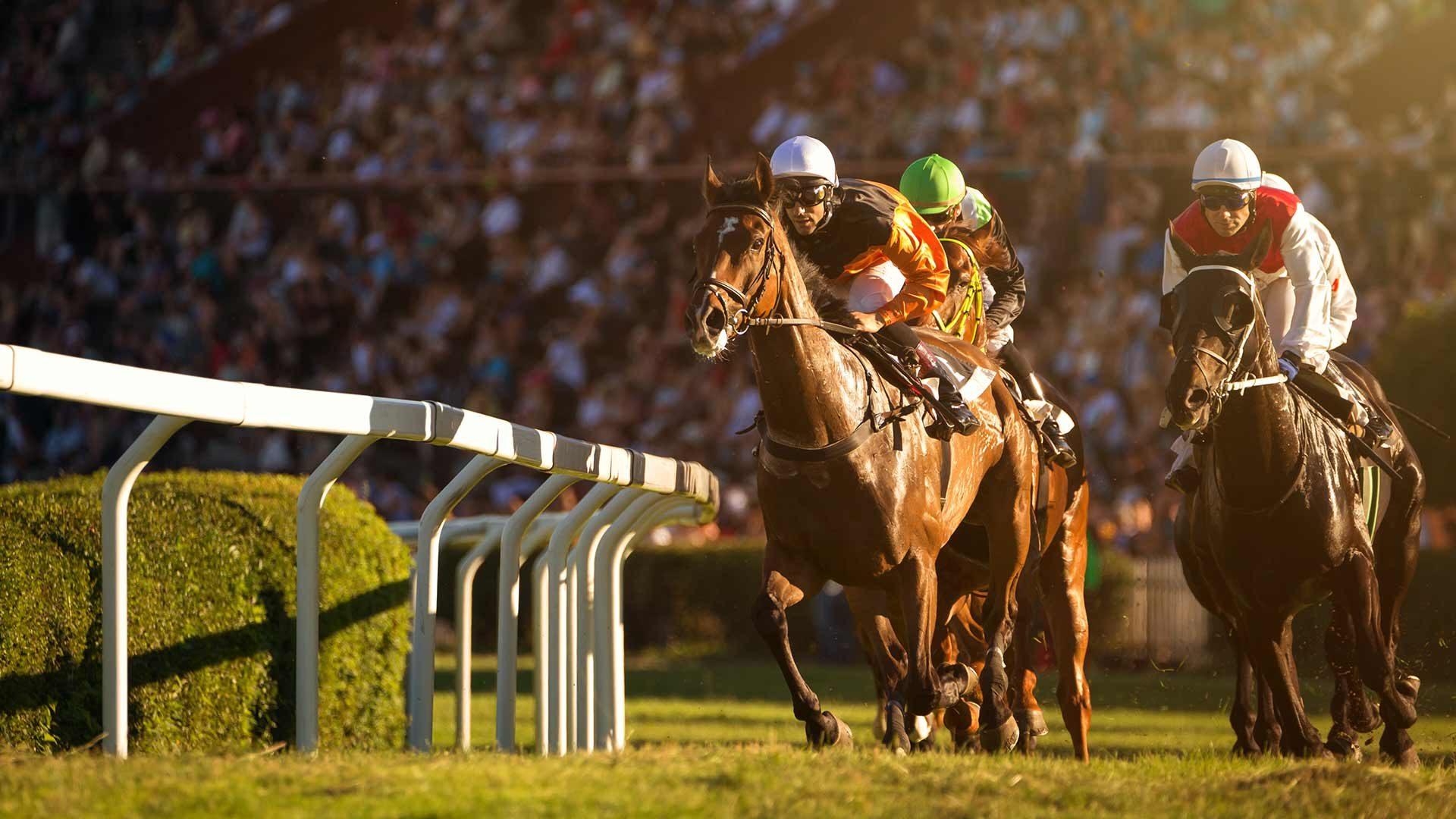 Spettacolare corsa di cavalli