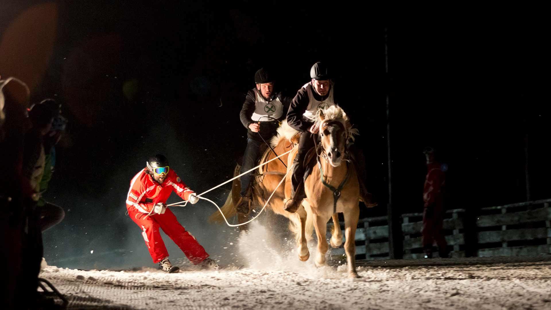 Gara notturna di Skikjöring con cavalli avelignesi