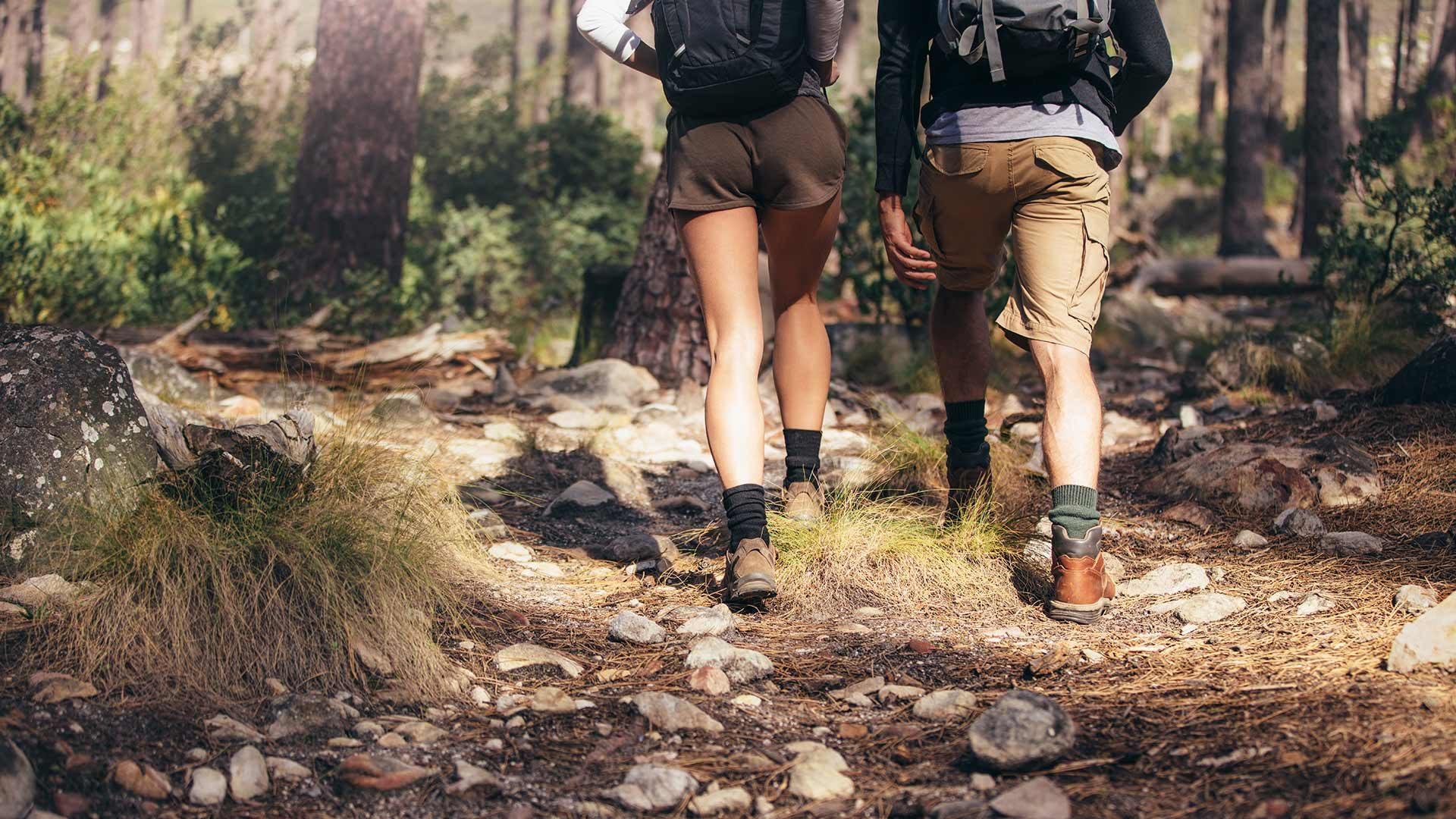 Escursione per le malghe a Verano