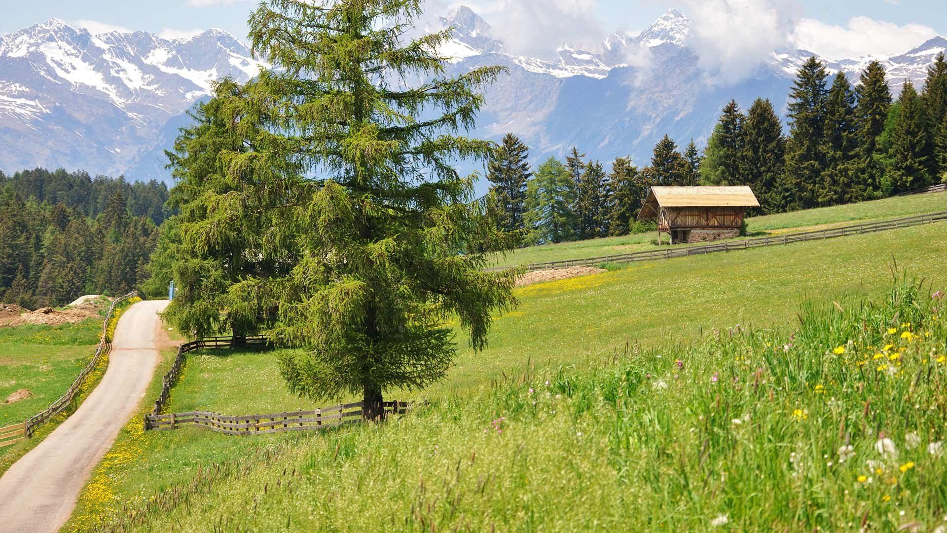 Escursione Gargazzone - Verano