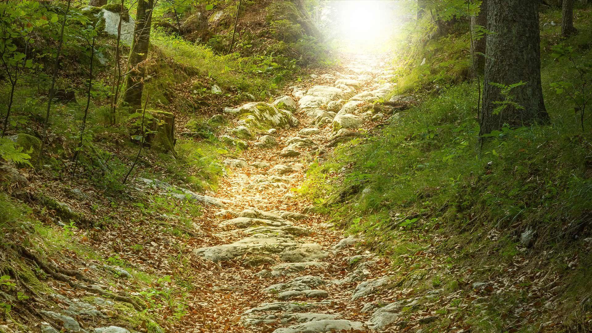 Sentiero della meditazione
