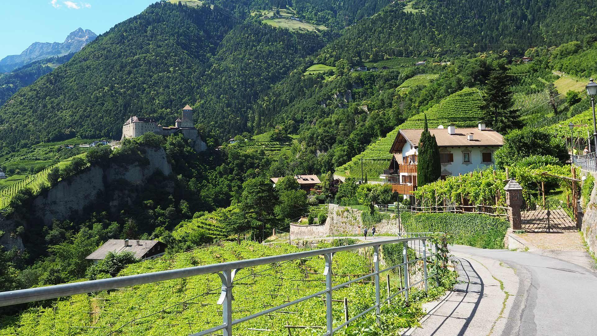 Percorso culturale Tirolo