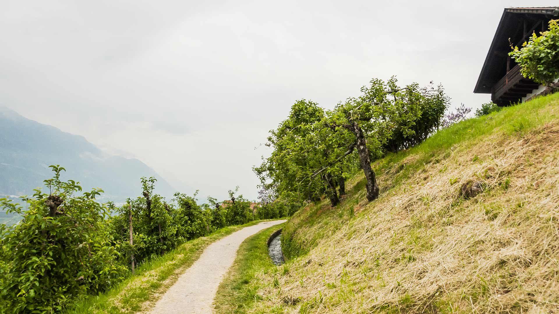 Escursione circolare a Marlengo